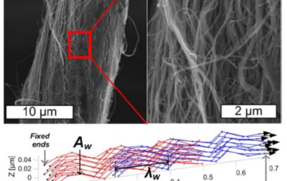 Morphology-Dependent Load Transfer Limits the Strength of Carbon Nanotube Yarns