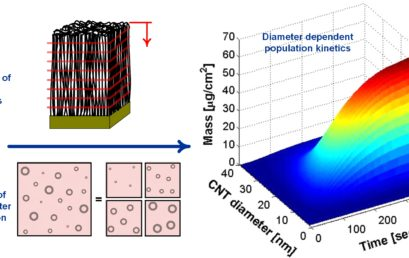 Diameter-Dependent Kinetics of Activation and Deactivation in Carbon Nanotube Population Growth