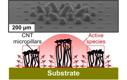 Synergetic Chemical Coupling Controls the Uniformity of Carbon Nanotube Microstructure Growth