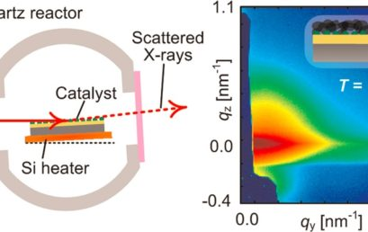 High-Speed in Situ X-Ray Scattering of Carbon Nanotube Film Nucleation and Self-Organization