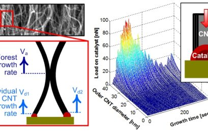 Mechanical Coupling Limits the Density and Quality of Self-Organized Carbon Nanotube Growth