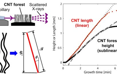 Measurement of the Lengthening Kinetics of Vertically Aligned Nanostructures by Spatiotemporal Mapping of Height and Orientation