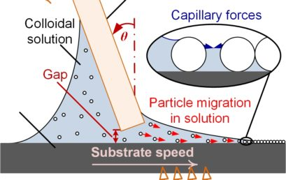 Precision Control of Nanoparticle Monolayer Assembly: Optimizing Rate and Crystal Quality