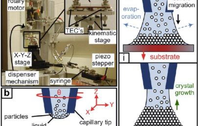 Direct-Write Self-Assembly of 3D Colloidal Microstructures