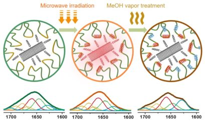 Promoting Helix-Rich Structure in Silk Fibroin Films through Molecular Interactions with Carbon Nanotubes and Selective Heating for Transparent Biodegradable Devices