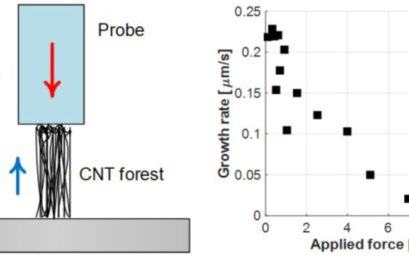 In Situ Mechanochemical Modulation of Carbon Nanotube Forest Growth