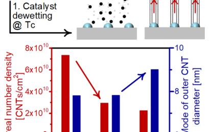 Decoupling Catalyst Dewetting, Gas Decomposition, and Surface Reactions in Carbon Nanotube Forest Growth Reveals Dependence of Density on Nucleation Temperature