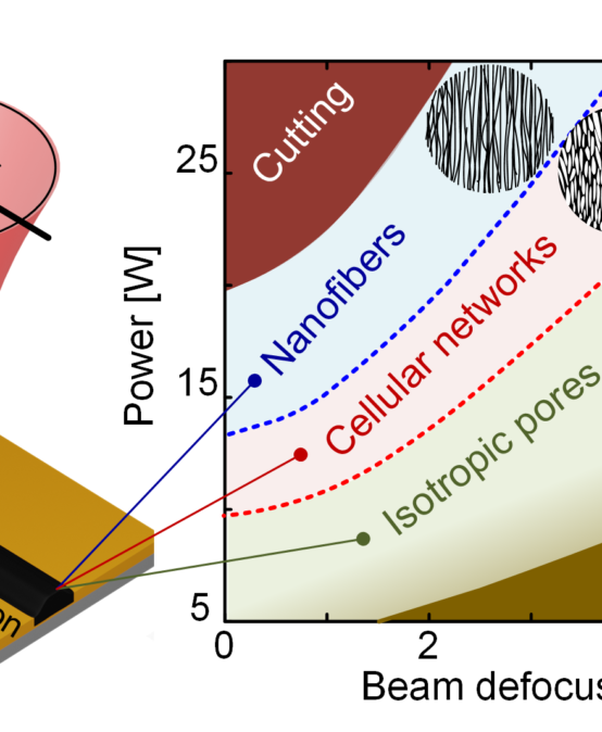 Fluence-Dependent Morphological Transitions in Laser-Induced Graphene Electrodes on Polyimide Substrates for Flexible Devices