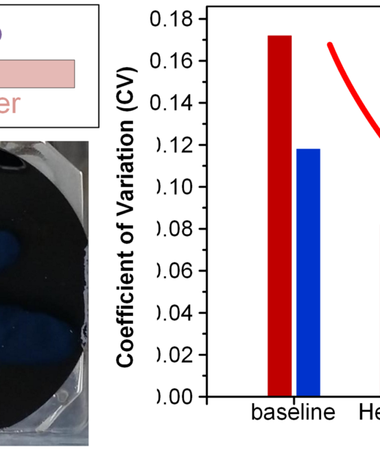 Reducing Variability in Chemical Vapor Deposition of Carbon Nanotubes Based on Gas Purification and Sample Support Redesign