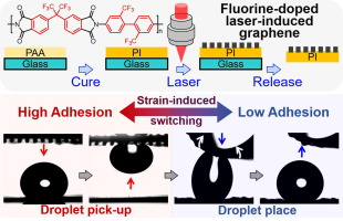Laser-Induced Fluorinated Graphene for Superhydrophobic Surfaces with Anisotropic Wetting and Switchable Adhesion